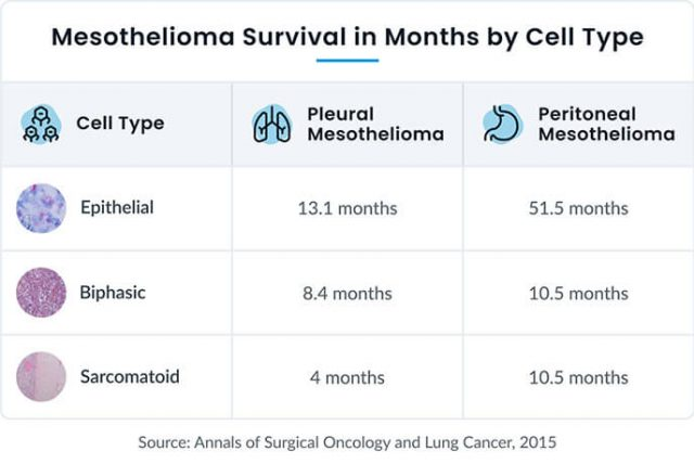 Mesothelioma survival rates by cell type